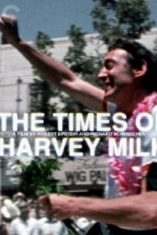 The times of Harvey Milk (OF) DVD270