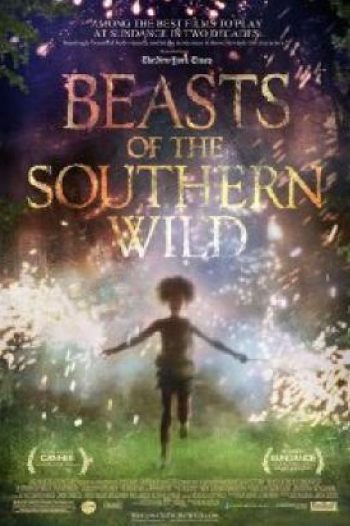 Beasts Of The Southern Wild DVD6954
