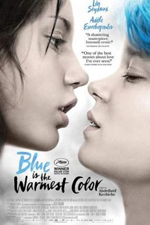 Blau ist eine warme Farbe - Blue is the warmest Colour - La vie d'Adèle - Chapitres 1 et 2 DVD8065
