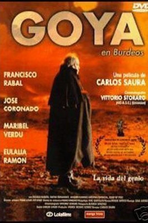 Goya in Bordeaux - Goya - Goya en Burdeos (1999) (Rating 7,3) DVD167
