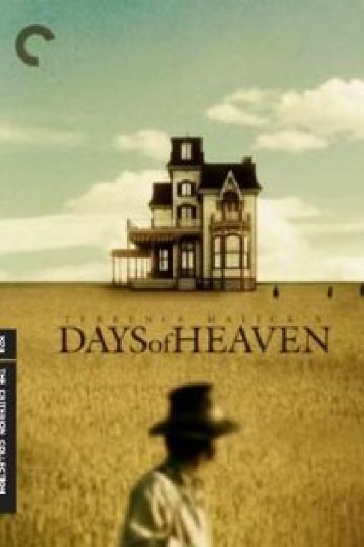 In der Glut des Südens - Days of Heaven (Rating 8,9) DVD3506