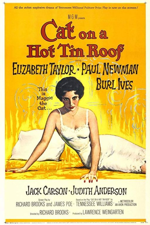 Die Katze auf dem heissen Blechdach - Cat on a Hot Tin Roof (1958) (Rating 8,5) DVD1147