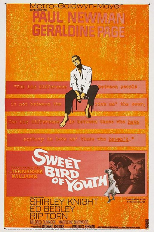Süsser Vogel Jugend - Sweet Bird of Youth (1962) (Rating 8,0) DVD-