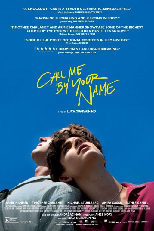 Call Me by Your Name (2017) (Rating 8,1) (also with engl. subt.) DVD10204